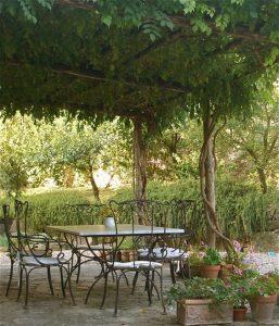 Pergola toiture plantes grimpantes